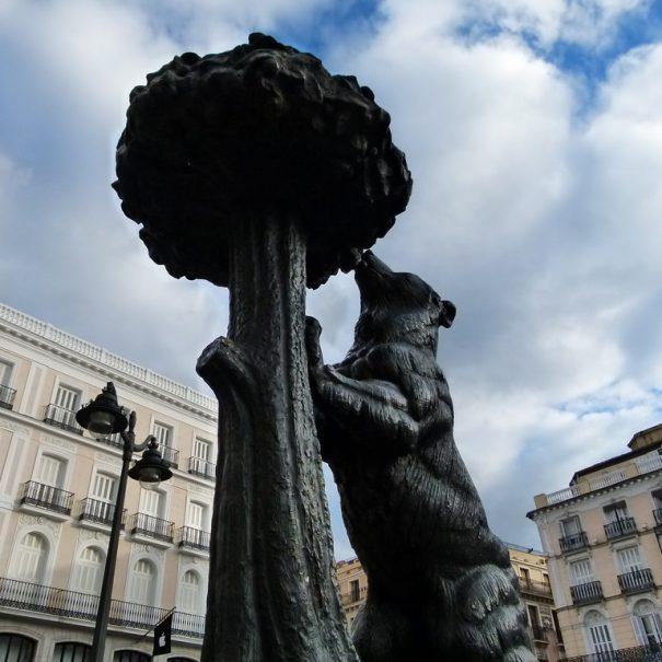 медведь у земляничного дерева Мадрид
